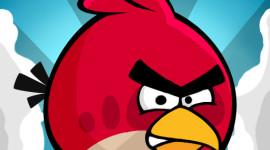 Co Vám při hraní Angry Birds nejvíce vybíjí baterii?