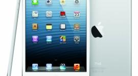 iPad mini 2 s Retina displejem v přípravě