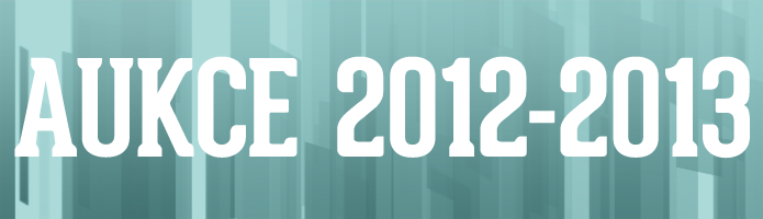Aukce 2012 - 2013