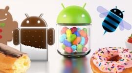 Fragmentace Androidu není až tak velký problém, říká spoluzakladatel systému