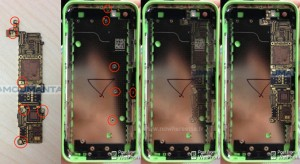 iphone-color-cases-5