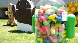 Android Jelly Bean dominuje, KitKat mírně posílil [statistika]