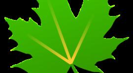Spořič baterie Greenify nyní i bez ROOTu