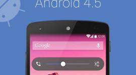 Android 4.5 a Nexus 8 již v červenci [spekulace]