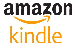 Nejefektivnější reklamy měl za rok 2013 Amazon a LG