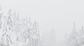 bg_weather_snow_heavy_day