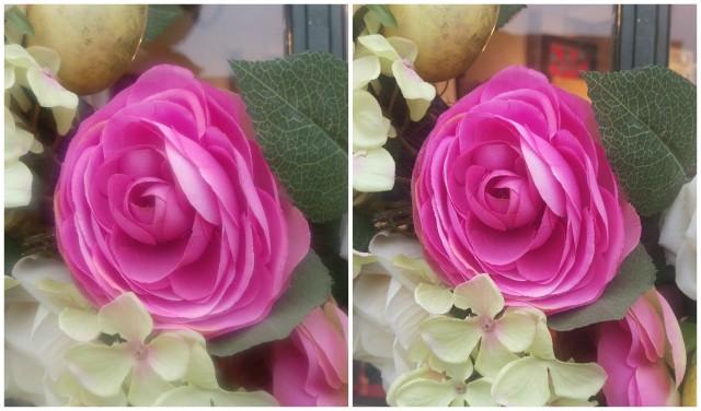 M9-Photo-Comparison-Flowers-640x376