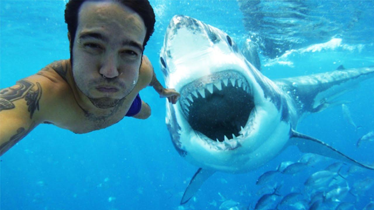 Selfie jsou vražednější než žraloci [zajímavost]