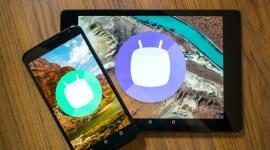 Android statistika – Marshmallow posiluje své postavení