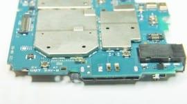 DSC_8695