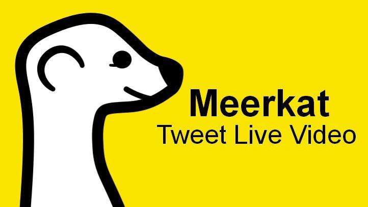 meerkat-app-feature-image-carve
