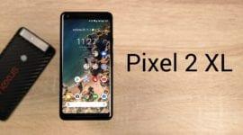 LIVE: Pixel 2 XL