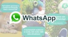 """WhatsApp začne třídit """"Příběhy"""", zřejmě neuvidíte vše od kontaktů"""