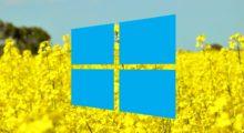 Jarní akce: získejte originální Windows 10 Pro za 519 Kč! [sponzorovaný článek]