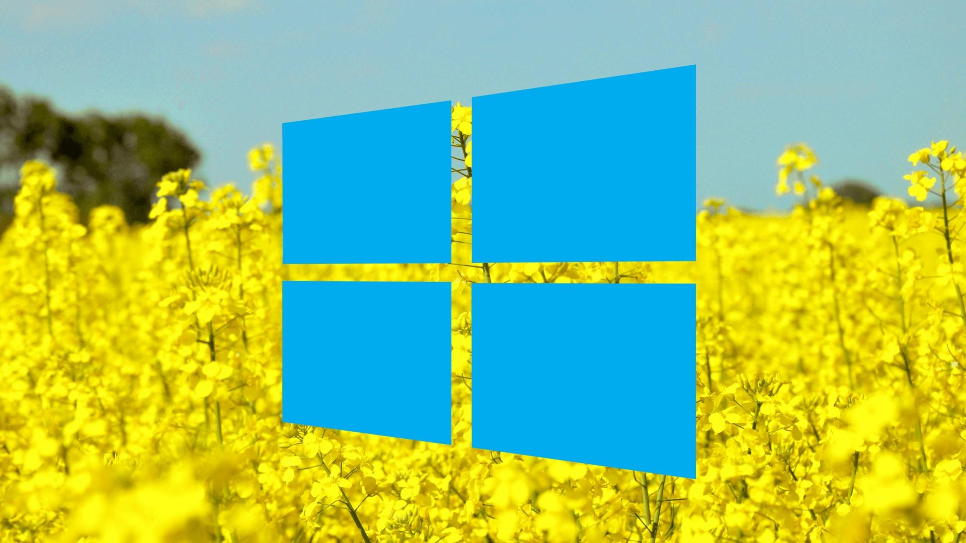 Letní slevová kalamita: Windows 10 Pro a Office 2016 Pro jen za 293 a 792 Kč! [sponzorovaný článek]