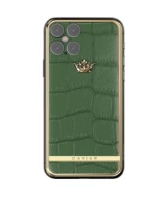 V 12 Green leather catalog 257x316x