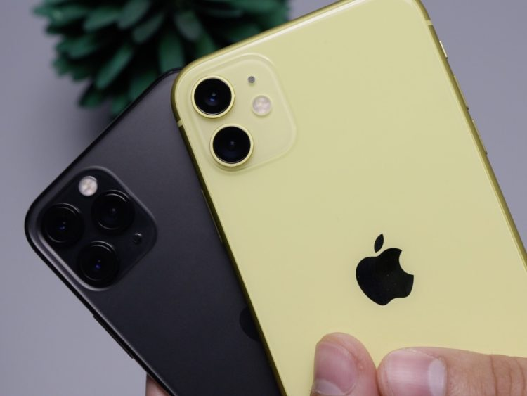 1024 768 iPhone 11 1024x768x
