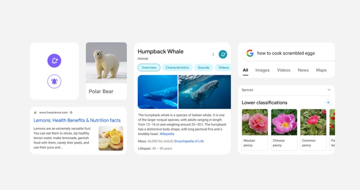 Google mění podobu výsledků vyhledávání v aplikaci